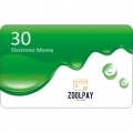 Zool Pay Virtual Visa Card Loading cards $30