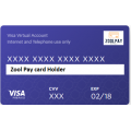 Zool Pay Virtual Visa Card For Internet Shopping